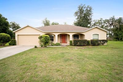 Ocala Single Family Home For Sale: 3131 SW 41st Avenue