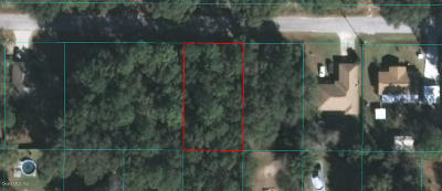 Ocala Residential Lots & Land For Sale: NW 61 Lane