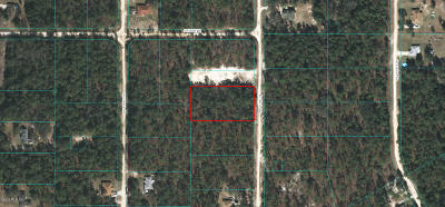Ocala Residential Lots & Land For Sale: SW 137 Court