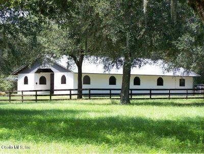 Morriston Farm For Sale: 4950 SE 212th Court