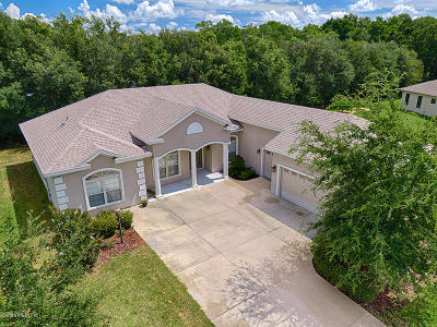 Stonecrest Single Family Home For Sale: 11024 SE 168th Loop