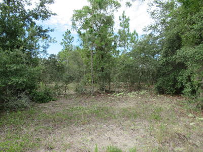 Dunnellon FL Residential Lots & Land For Sale: $2,950