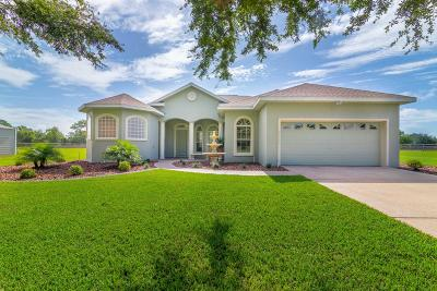 Summerfield Single Family Home For Sale: 14149 SE 95 Avenue