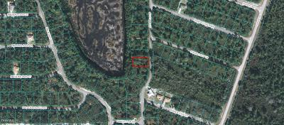 Ocklawaha FL Residential Lots & Land For Sale: $9,995