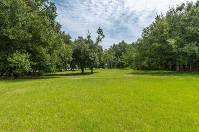 Ocala Residential Lots & Land For Sale: SW 31st Street