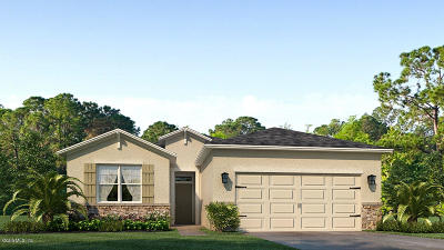Ocala Single Family Home For Sale: 6353 SE 89th Loop