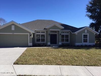 Ocala Single Family Home For Sale: 2729 SE 46th Avenue