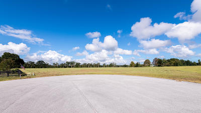 Citra Residential Lots & Land For Sale: NW 161st Street