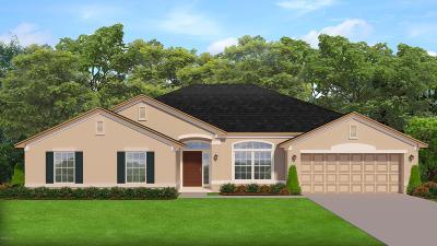 Ocala Single Family Home For Sale: 4160 SW 100th Street