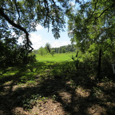Levy County Residential Lots & Land For Sale: NE 178th Terrace