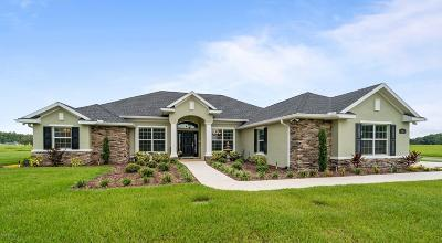 Ocala Single Family Home For Sale: 1953 NW 80th Street