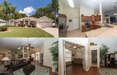 Belleview Single Family Home For Sale: 6821 SE 100th Place