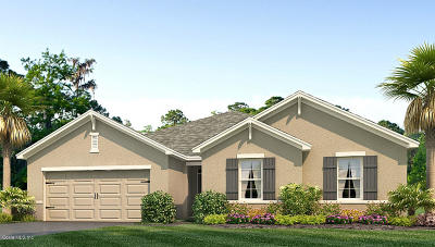 Ocala Single Family Home For Sale: 138 Hickory Course Radial