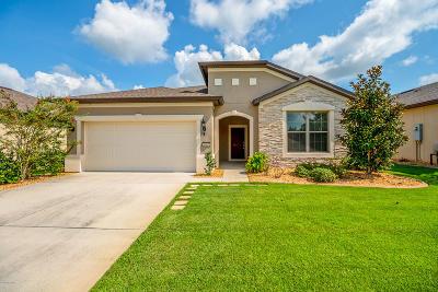 Ocala Single Family Home For Sale: 9967 SW 78th Lane