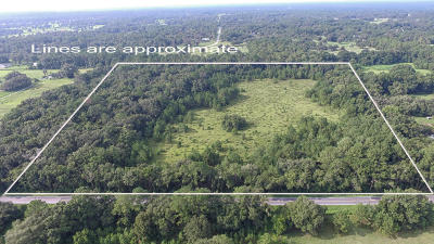 Ocala Residential Lots & Land For Sale: 11700 W Hwy 326