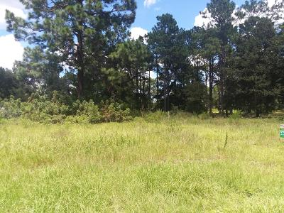 Levy County Residential Lots & Land For Sale: SE 35th St (Cr 326) Street