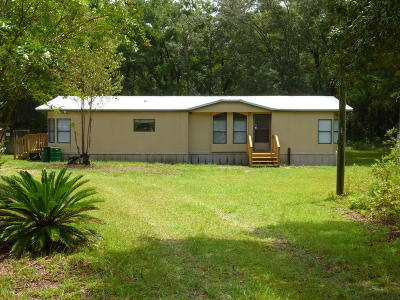 Ocala Mobile/Manufactured For Sale: 4855 SW 165 Ave Road