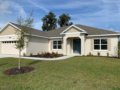 Ocala Single Family Home For Sale: 1083 NW 46 Place