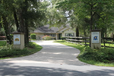 Ocala Farm For Sale: 10 Nashua Way