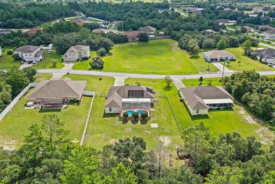 Ocala Single Family Home For Sale: 9924 SW 41st Avenue
