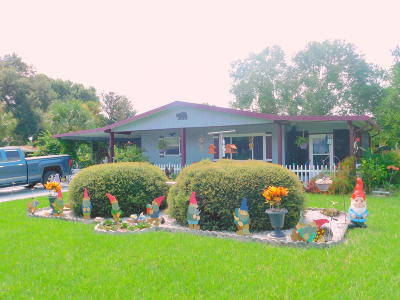 Ocala Single Family Home For Sale: 8900 SW 101 St. Place