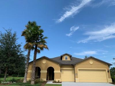 Ocala Single Family Home For Sale: 9150 SW 65th Loop