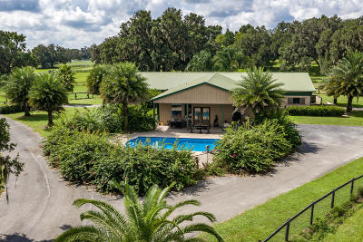 Ocala Farm For Sale: 12885 W Hwy 40