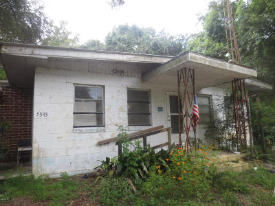 Ocklawaha Single Family Home For Sale: 5393 SE 161 Ave Road