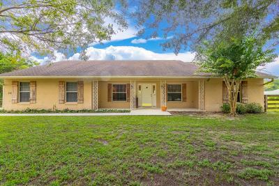 Lady Lake Single Family Home For Sale: 810 Via San Polo