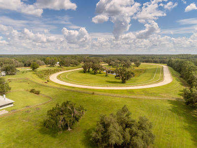 Micanopy Farm For Sale: 10909 NW 198th Street