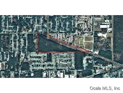 Ocala Residential Lots & Land For Sale: 56ac- NE 28 Street