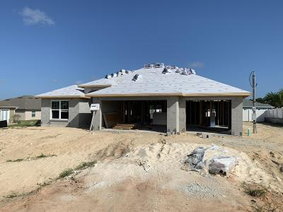 Ocala Single Family Home For Sale: 5353 SW 97th Land Road