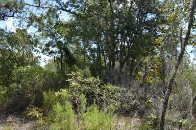 Levy County Residential Lots & Land For Sale: NE 121 Street