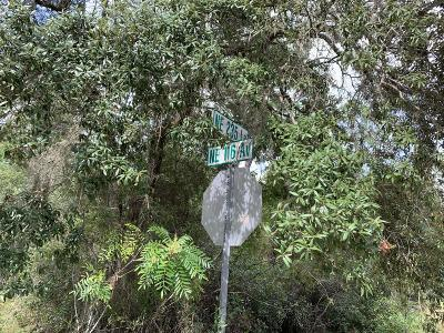 Citrus County, Levy County, Marion County Residential Lots & Land For Sale: Lot 19 NE 116th Avenue