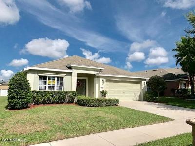 Ocala Single Family Home For Sale: 4102 SW 49th Avenue