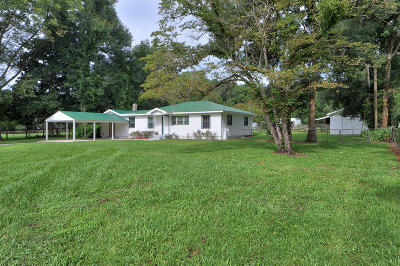 Farm For Sale: 6000 W Anthony Road