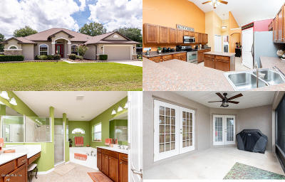 Dunnellon Single Family Home For Sale: 10081 SW 130th Court