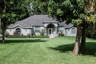 Ocala Single Family Home For Sale: 1801 SW 28th Street