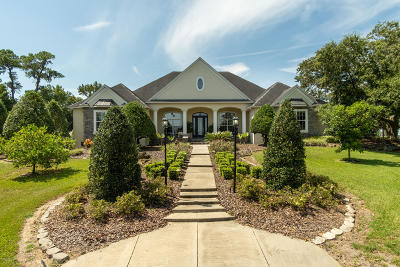 Ocala Farm For Sale: 9110 NW Hwy 225a