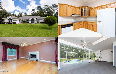 Ocala Single Family Home For Sale: 795 SW 89th Terrace