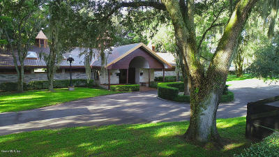 Ocala Horse Properties for Sale - Horse Farm for Sale in