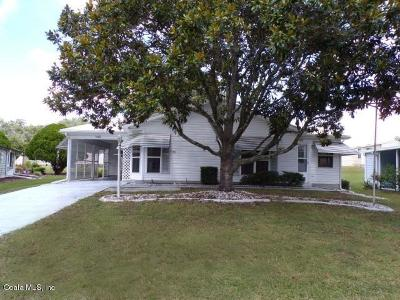 Lady Lake Single Family Home For Sale: 1141 Paradise Drive