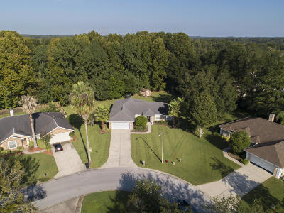 Ocala Single Family Home For Sale: 3498 SE 54th Avenue