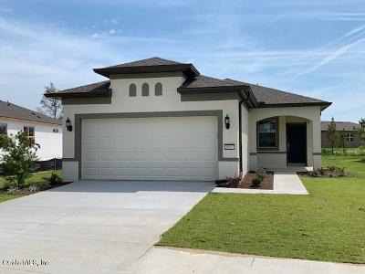 Ocala Single Family Home For Sale: 6082 SW 93rd Circle