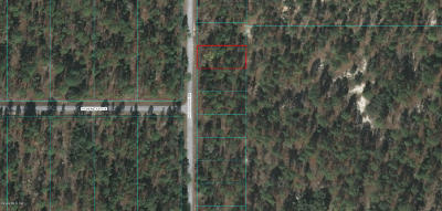 Dunnellon Residential Lots & Land For Sale: Lot 29 NW Terrapin Dr