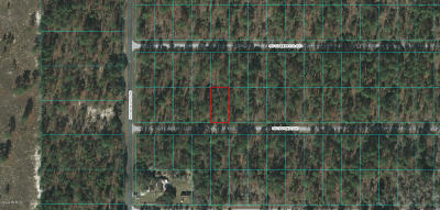 Dunnellon Residential Lots & Land For Sale: Lot 48 NW Highview Ave
