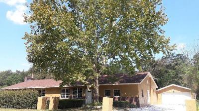 Ocala Single Family Home For Sale: 2095 SE 110th Street