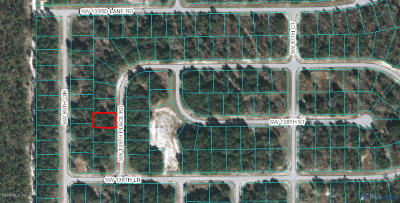 Ocala Residential Lots & Land For Sale: SW 139th Place Road #30