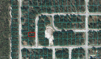 Ocala Residential Lots & Land For Sale: SW 139th Place Road #31