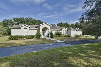 Dunnellon Single Family Home For Sale: 9785 SW 125 Terrace